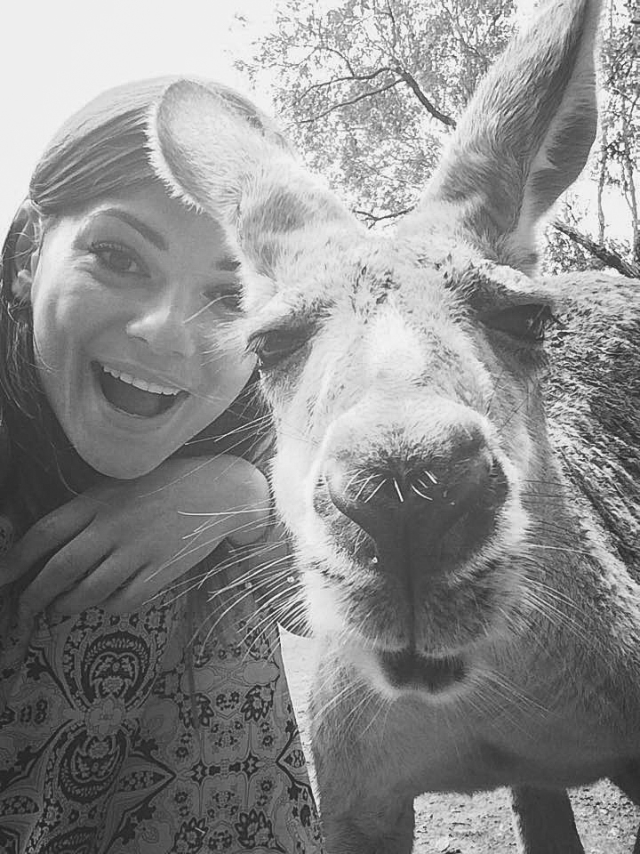 Hang out with Kangaroos in Australia